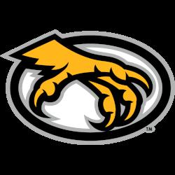 kennesaw-state-owls-alternate-logo-2012-2016-2