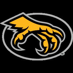 kennesaw-state-owls-alternate-logo-2012-2016-3