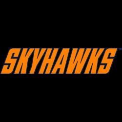 tennessee-martin-skyhawks-wordmark-logo-2007-present-4